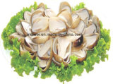 2840g Canned Straw Mushroom with Best Price