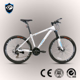 Bicycle Factory 24-Speed Aluminum Alloy Mountain Bike