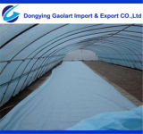 Spunbonded Nonwoven Fabric Used on Agricultural Cover