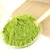 High Grade Spray Dried Green Tea Powder for Hot Drinking