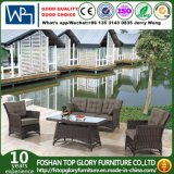 All Weather Aluminum Outdoor Garden Furniture Sofa Set (TG-2135)