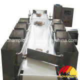 Poultry Slaughterhouse Using Automatic Poultry Bodies Weighing Grader