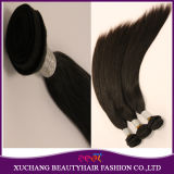 Unprocessed 100% Bazilian Virgin Hair Extension