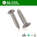 Stainless Steel Philip Flat Head Self Tapping Screw