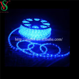 Transparent 10mm Thin Blue Tube LED Rope Lights