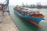 Truck Container Logistics Shipping From Ningbo/China to New-Orleans Omaha