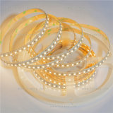 High Brightness Stripe LED Light CE RoHS SMD2835 LED Strips