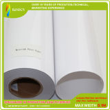 240GSM Matte Coated Solvent Photo Paper Roll, Waterproof Printing Photo Paper