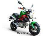 Rzm125j Sport Motorcycle 125cc/150cc