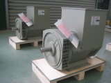 48kw (60kVA) Electric Three Phase Brushless AC Alternator Jdg224e