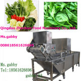 Air Bubble Fruit Vegetable Washing Machine