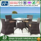 Popular Design Leisure Garden Dining Furniture Aluminum Chair Table Set (TG-1056)
