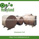 PE Plain Aluminum Coil (ALC1104)