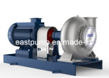 Hot Water Circulation Pipeline Pump