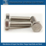 Ss316 Stainless Steel A4-70 Hex Bolts