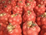 Onion Bag (E04)