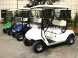 2 Seat 48V Electric Golf Cart