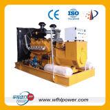 Gas Generator 10-1000kw
