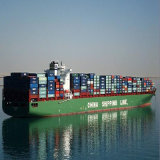 Professional Freight Forwarder From Qingdao/Tianjin/Shanghai to Chittagong