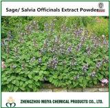 Factory Supply Medicinal Ingredient Sage Powder Extract 5: 1, 10: 1