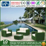 Garden Patio Wicker / Rattan Sofa Set (TG-3027)