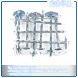 High Quality Galvanized Corrugated Nails