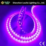 High Lumen Single Row 120LEDs/M Strip Lighting