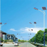 Intelligent Battery Garden Solar LED Light