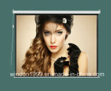 """100"""" 16: 9 Home Movie Electric Projection Screen Matte White Pull Down Projector"""
