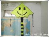 Classic Smiling Face Delta Kite