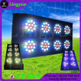 96X3w RGBW 8 Eyes DMX LED Blinder for Stage Shows