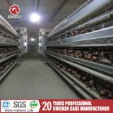 Chicken Farms Equipments Poultry Layer Cage in Malaysia for Sale