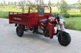 162fmj Cargo Tricycle with 4 Strokes EEC