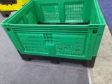Used Foldable Logistics Pallet Crate Mould Second Hand Card Box Mould