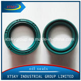Xtsky High Quality Auto Parts Tc Oil Seal