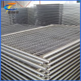 Factory Various Welded Panels Temporary Fence