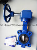 Qt450 Class 150lb Lugged Type Butterfly Valve with Gear