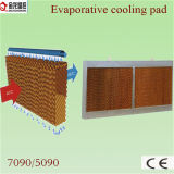 Evaporative Cooling Pad for Poultry Farm