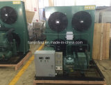 Parallel Air Cooling Low Temperature Compressor Units for Cold Room