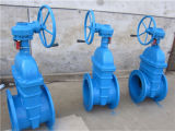 BS5163 Worm Gear Ductile Iron Gate Valve