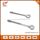 Ovaleye Anchor Rod Hot-DIP Galvanized