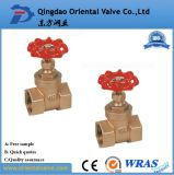 Nice Quality Brass Gate Valve 1/2 Inch for Industry
