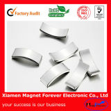 Superstrong Permanent Rare Earth/Neodymium Magnet for Motor/Generators