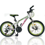 "Bike: 26"", Mountain Bike, with Shimano 21s, Disc-Brake (MTB-029)"