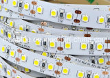 84 LEDs/M DC24V SMD2835 LED Flexible Strip