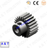 Made in China Pinion Gear of Pg-8