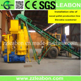 CE/SGS Approved Ring Die Biomass Pelletizing Machine Wood Dust Pellet Making Machine