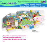 Indoor Playground Equipment with Soft Play for Kids (HD-8201)