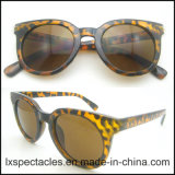New Released Fashion Men Pilot Injection Sunglasses