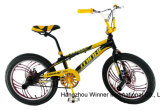 20 Inch 3.00 Tires Freestyle Bicycle